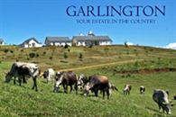 Garlington