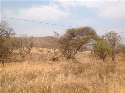 Kameelfontein property for sale. Ref No: 13240366. Picture no 5
