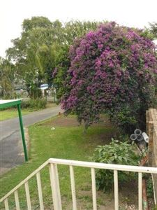 Die Heuwel And Ext property for sale. Ref No: 13296494. Picture no 33
