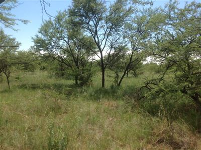 Kameelfontein property for sale. Ref No: 13296887. Picture no 25