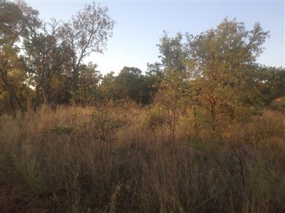 Krokodilspruit property for sale. Ref No: 13355098. Picture no 4