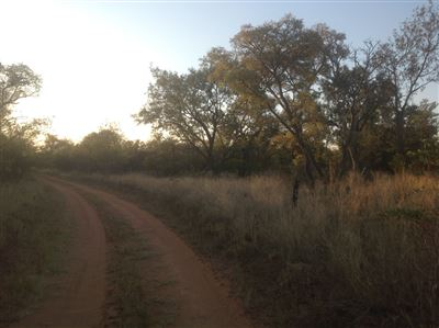 Krokodilspruit property for sale. Ref No: 13355098. Picture no 5