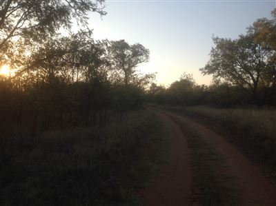 Krokodilspruit property for sale. Ref No: 13355098. Picture no 6