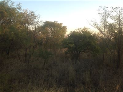 Krokodilspruit property for sale. Ref No: 13355098. Picture no 7
