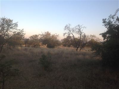 Krokodilspruit property for sale. Ref No: 13355098. Picture no 3