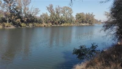 Farms for sale in Parys