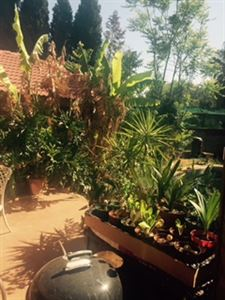Raslouw property for sale. Ref No: 13401997. Picture no 18