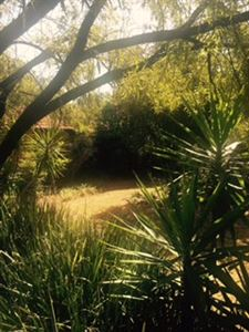 Raslouw property for sale. Ref No: 13401997. Picture no 21