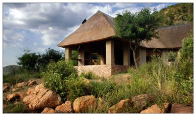Parys property for sale. Ref No: 13431840. Picture no 1