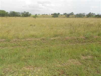 Parys Golf And Country Estate property for sale. Ref No: 13454167. Picture no 4