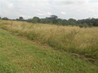 Parys Golf And Country Estate property for sale. Ref No: 13454183. Picture no 5