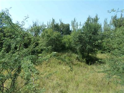 Parys Golf And Country Estate property for sale. Ref No: 13459944. Picture no 3