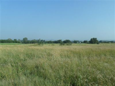 Parys Golf And Country Estate property for sale. Ref No: 13460920. Picture no 1
