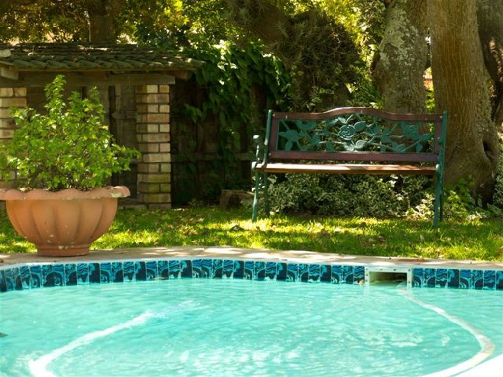Swimming pool area surrounded by well established garden