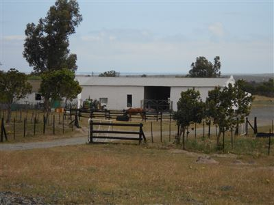Yzerfontein property for sale. Ref No: 13547436. Picture no 2