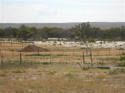 Yzerfontein property for sale. Ref No: 13547436. Picture no 4