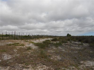 Yzerfontein property for sale. Ref No: 13547436. Picture no 11