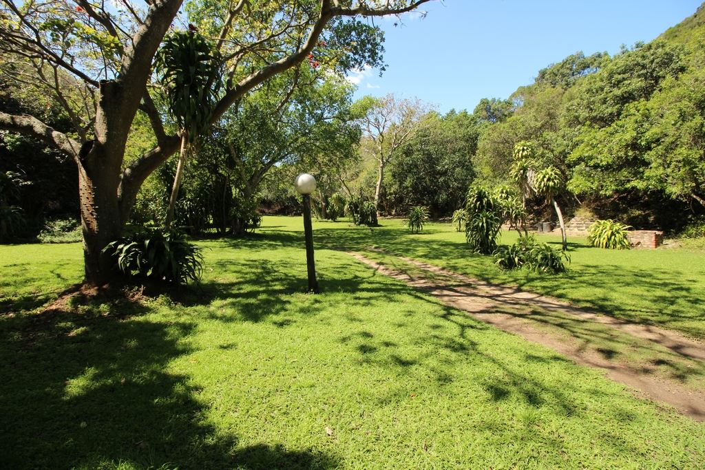 Camping area of the resort
