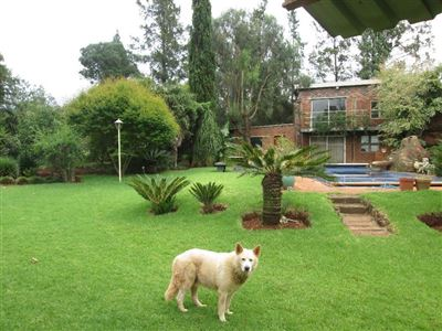 Raslouw property for sale. Ref No: 13584178. Picture no 50