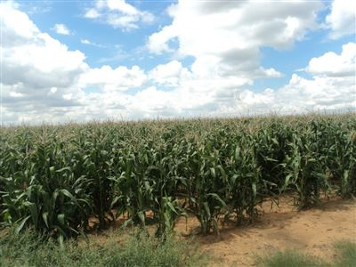 Property and Houses for sale in Viljoenskroon, Farms - ZAR 7,600,000