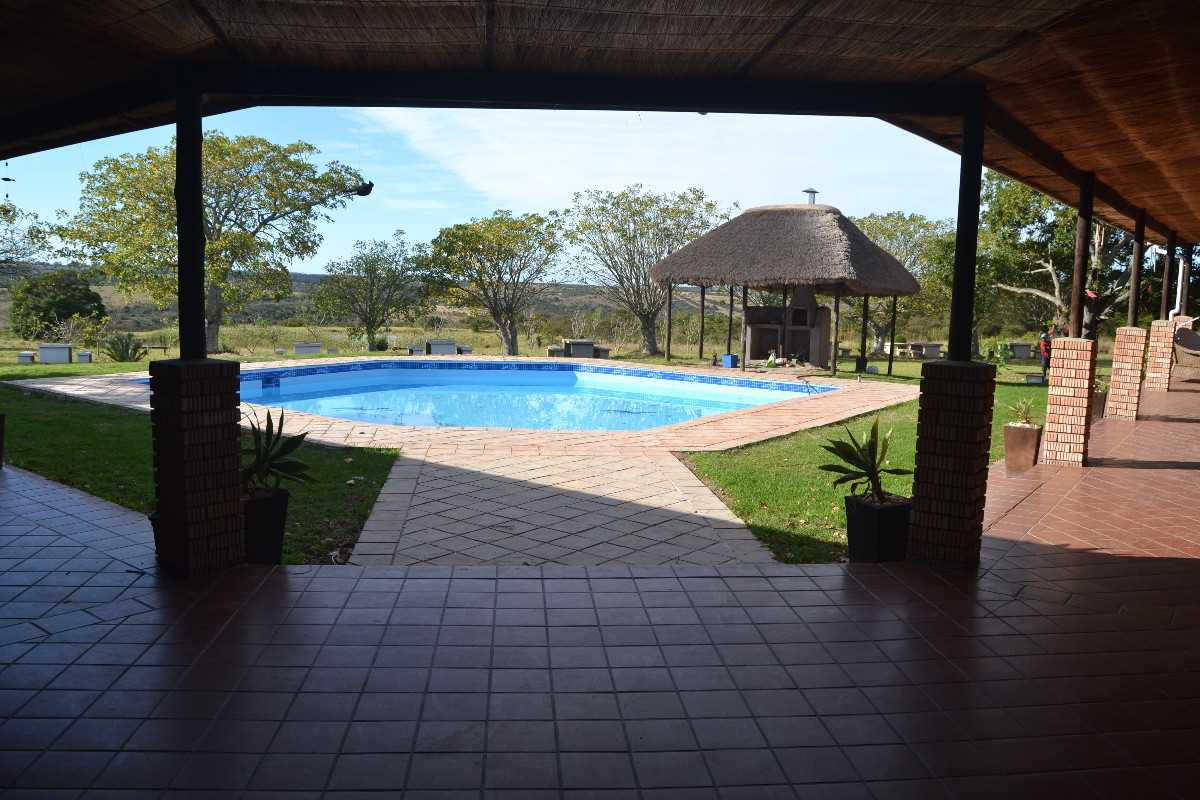 Swimming pool and braai area