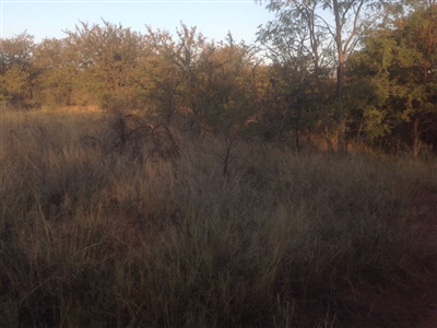Krokodilspruit property for sale. Ref No: 13355098. Picture no 8