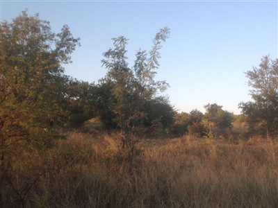 Krokodilspruit property for sale. Ref No: 13355098. Picture no 9