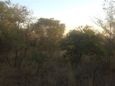 Krokodilspruit property for sale. Ref No: 13355098. Picture no 13
