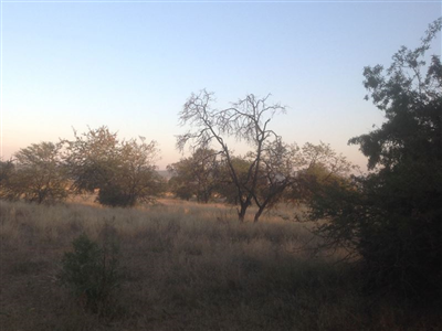 Krokodilspruit property for sale. Ref No: 13355098. Picture no 14