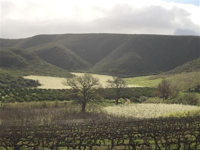 Farms for sale in Robertson
