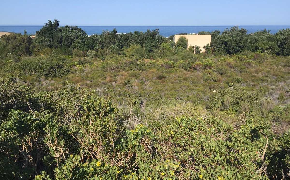 Business & residential plot | Work from home | Betty's Bay