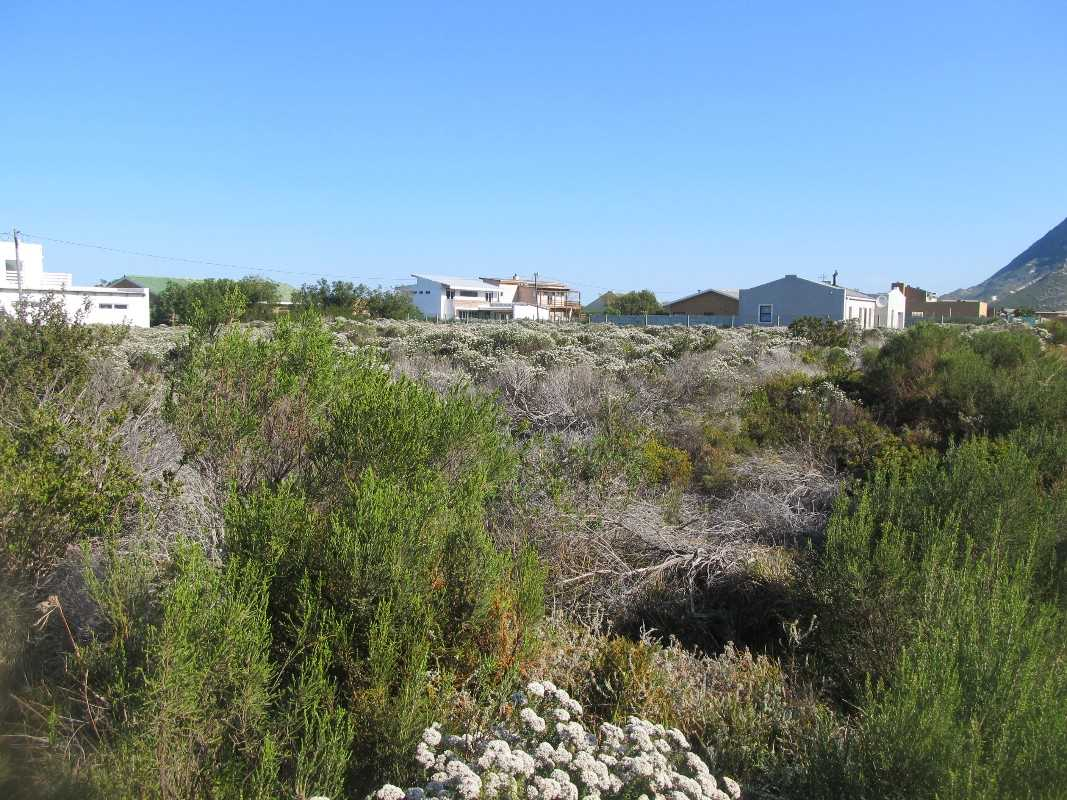 Vacant Plot / Stand For Sale Bettys Bay | Western Cape