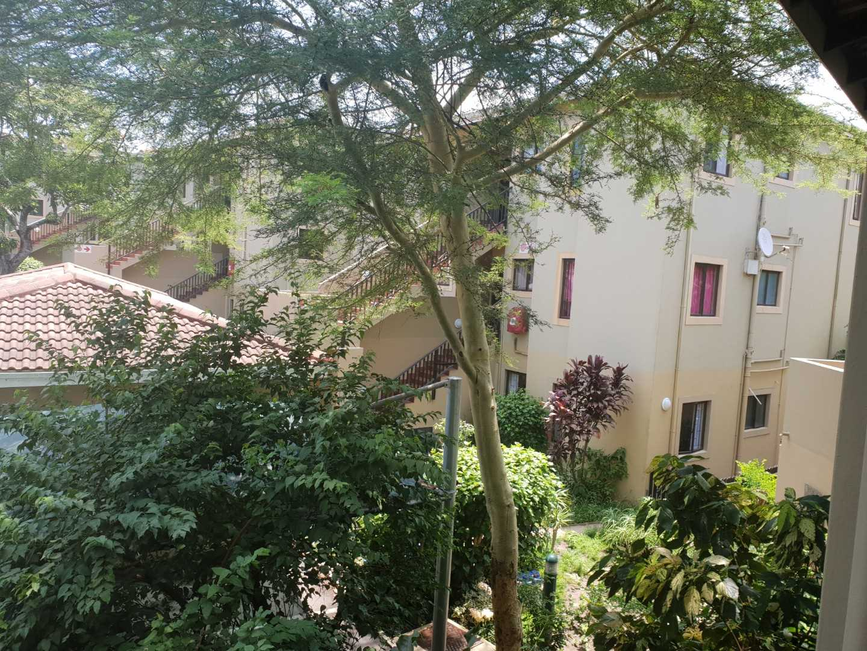 A Feel Good Apartment Amongst Leafy Serenity