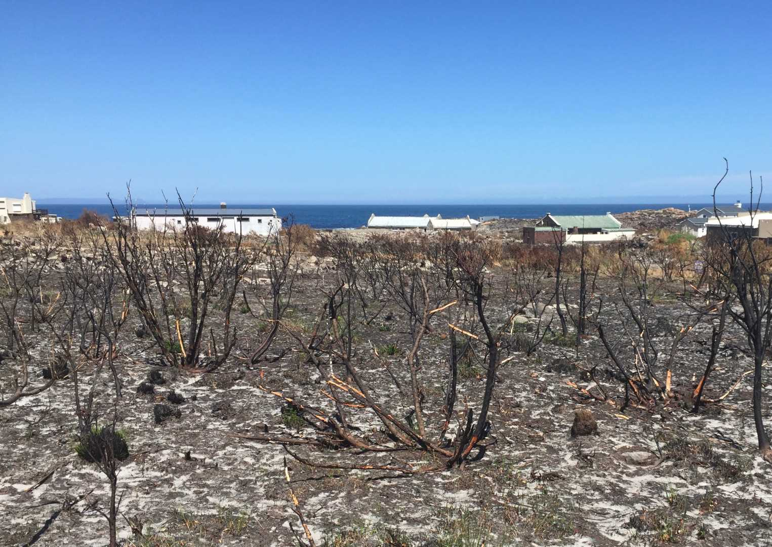 Property with sea/ocean views & serenity | Bettys Bay