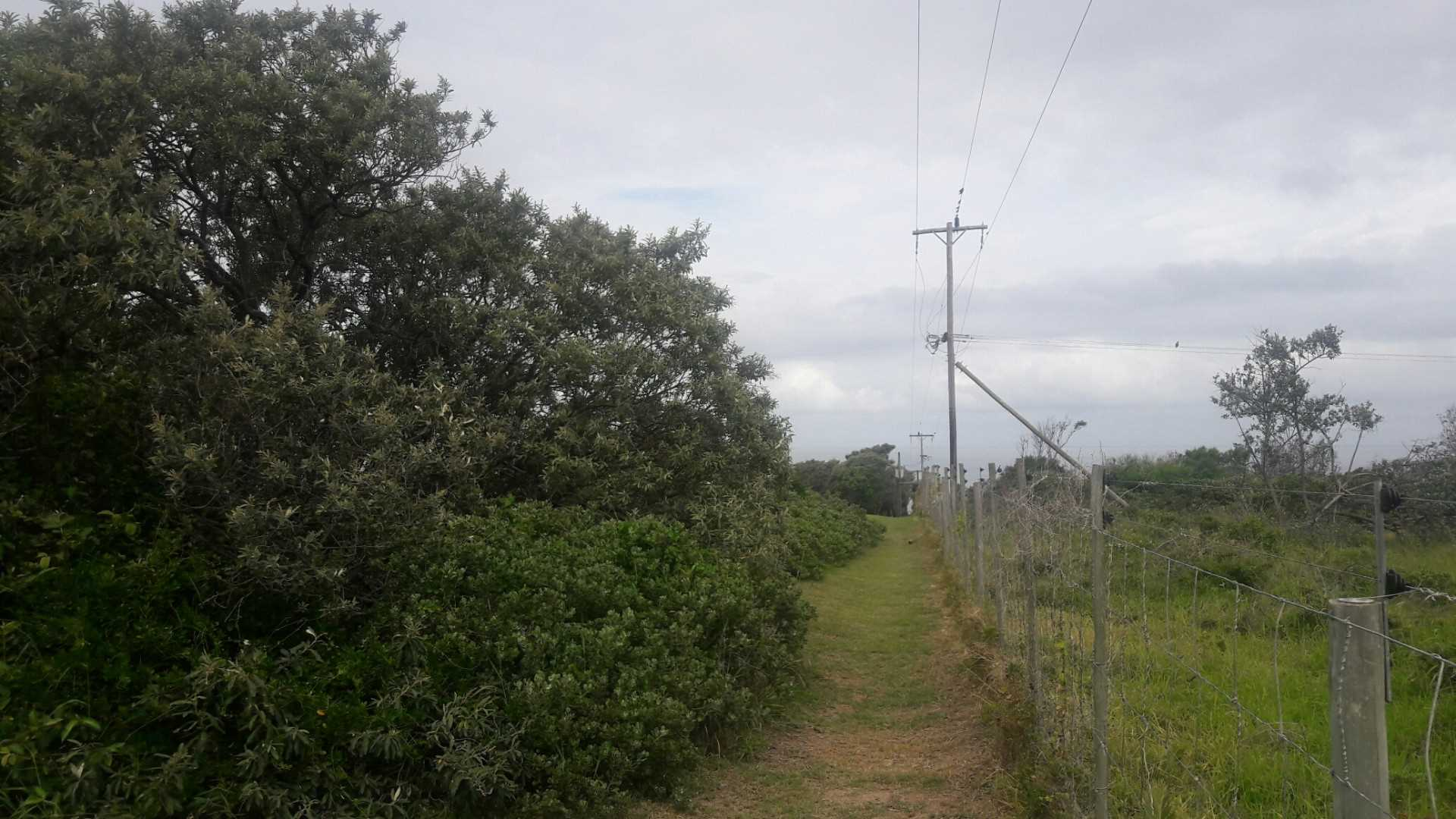 PLOT FROM THE BACK - BOUNDARY FENCE