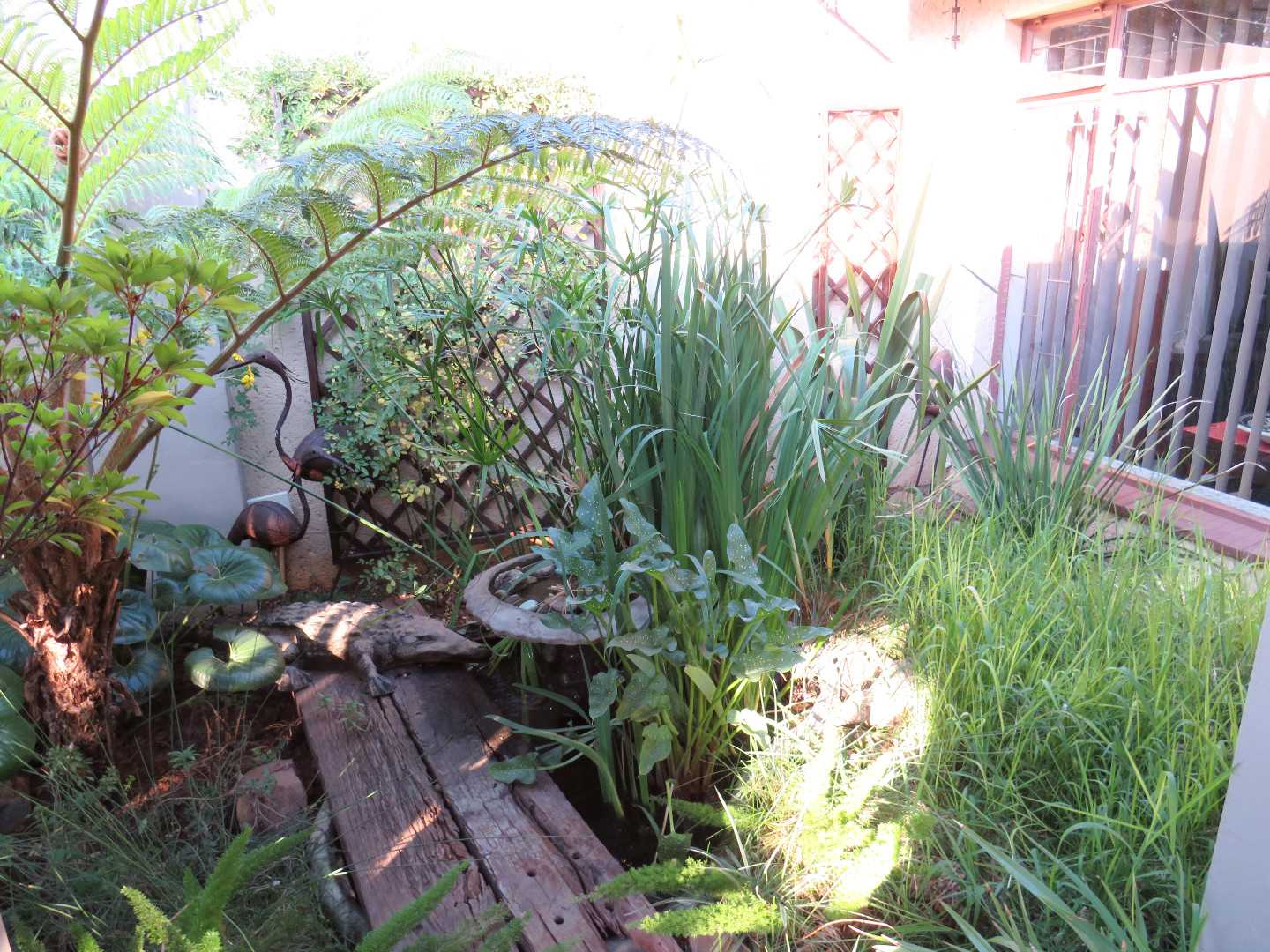 Garden Leading To Front Door