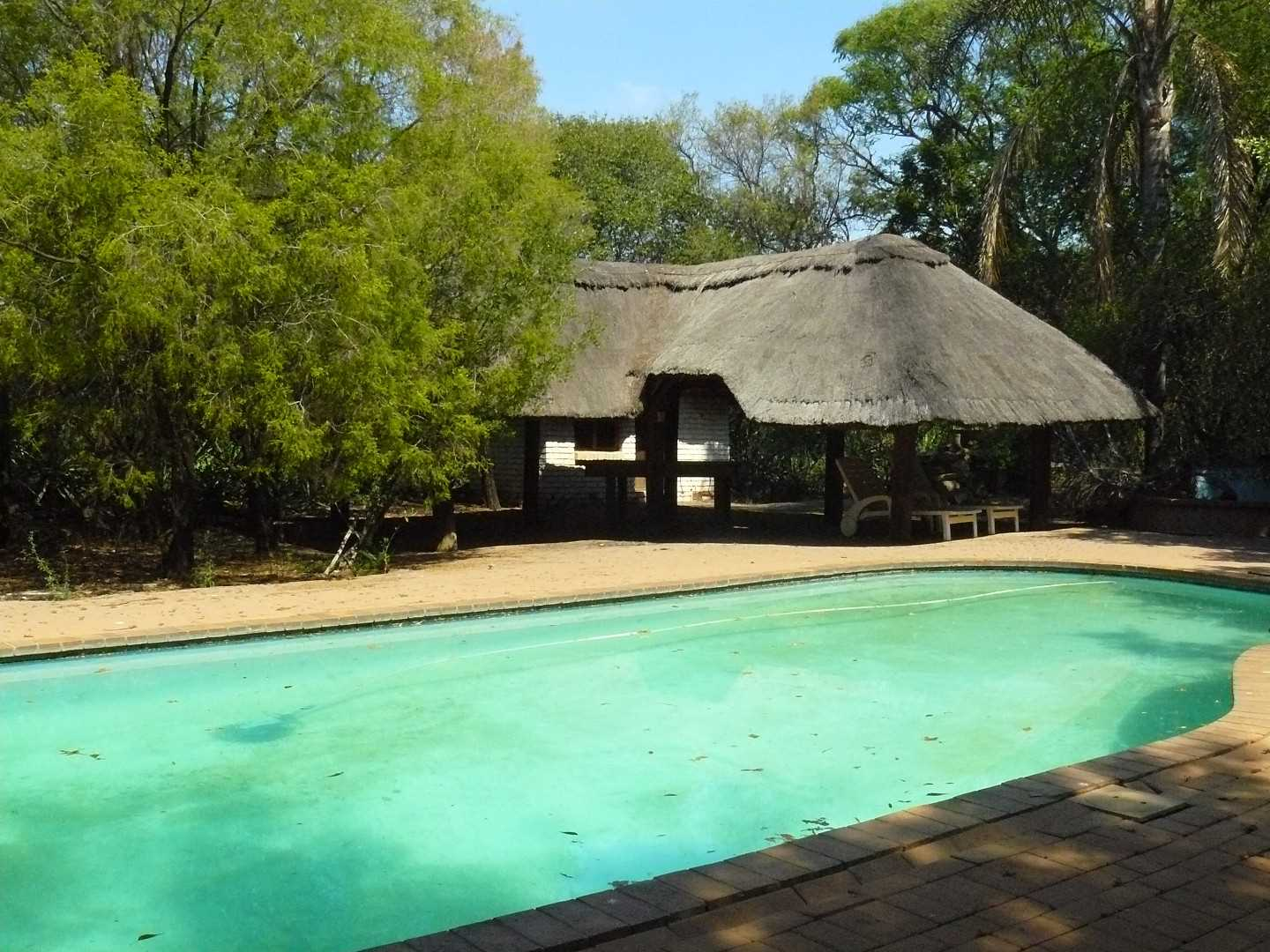 Pool with lapa, guests also has excess.
