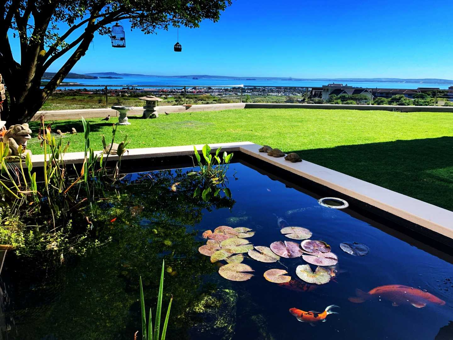 Koi Ponds at Sun Patio overlooking the garden with panaramic views of the lagoon
