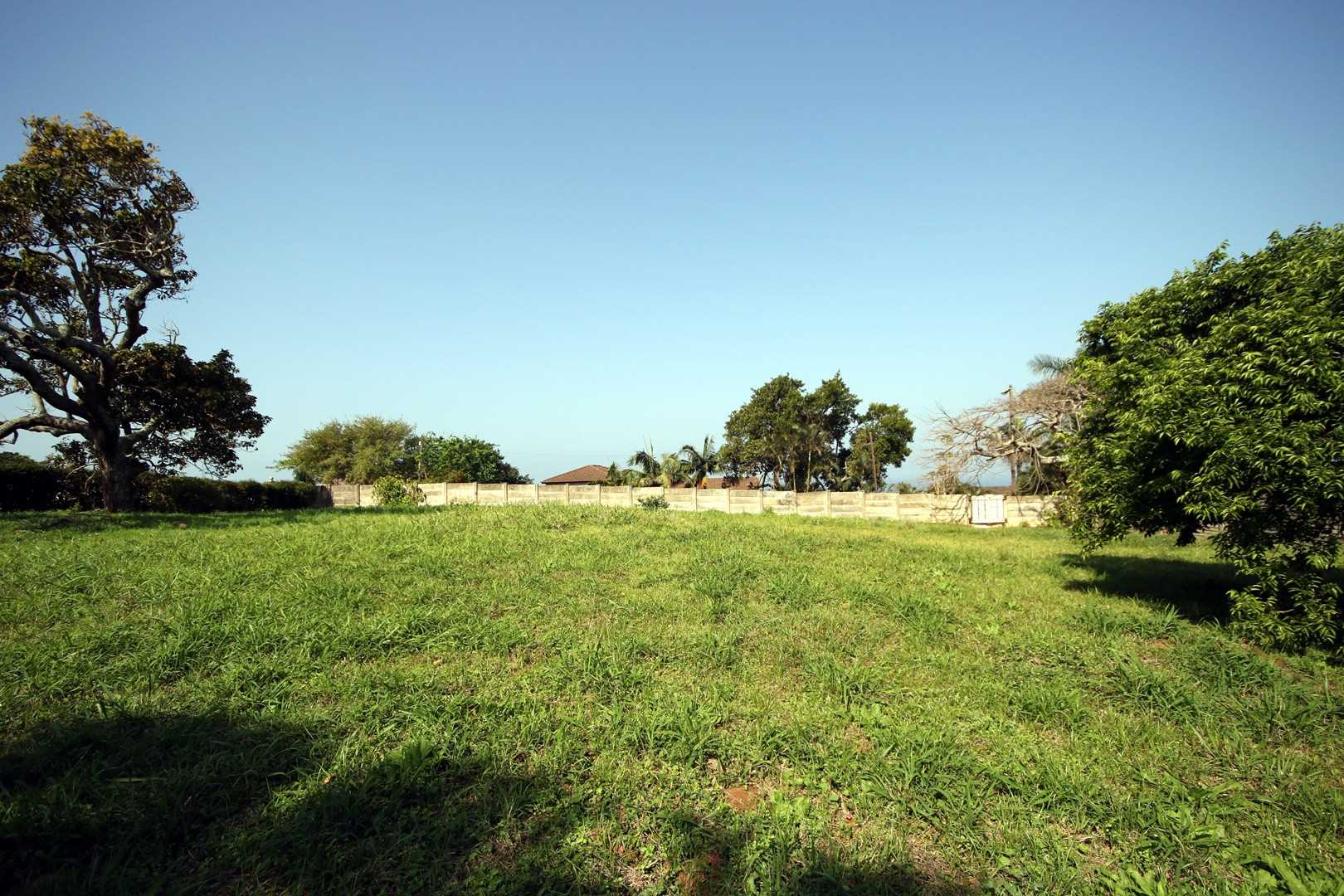 Vacant land in Freeland park