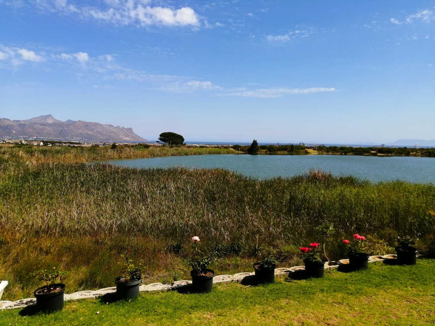 Luxury Estate Living in Sea View Lake, Somerset West