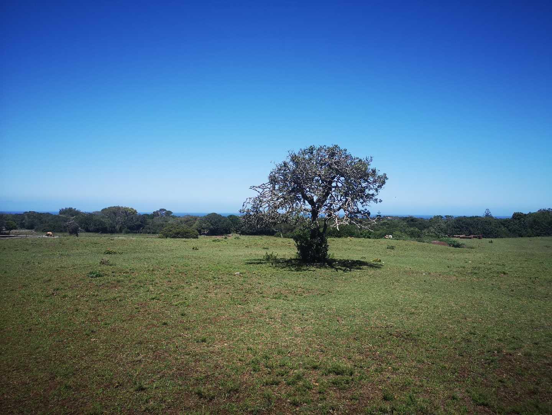 4,36 ha Land For Sale in Sardinia Bay
